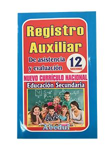 Registro auxiliar de secundaria chico 12 secciones ediciones abedul